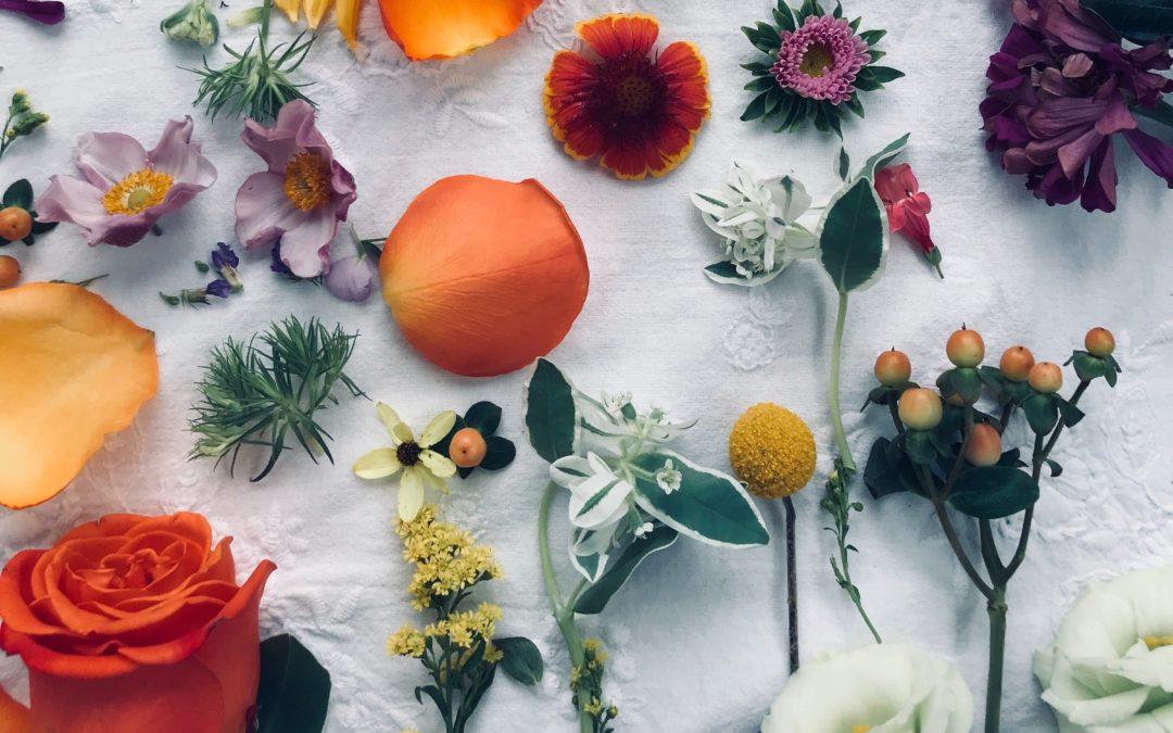 Konwencjonalne kosmetyki a kosmetyki naturalne i organiczne